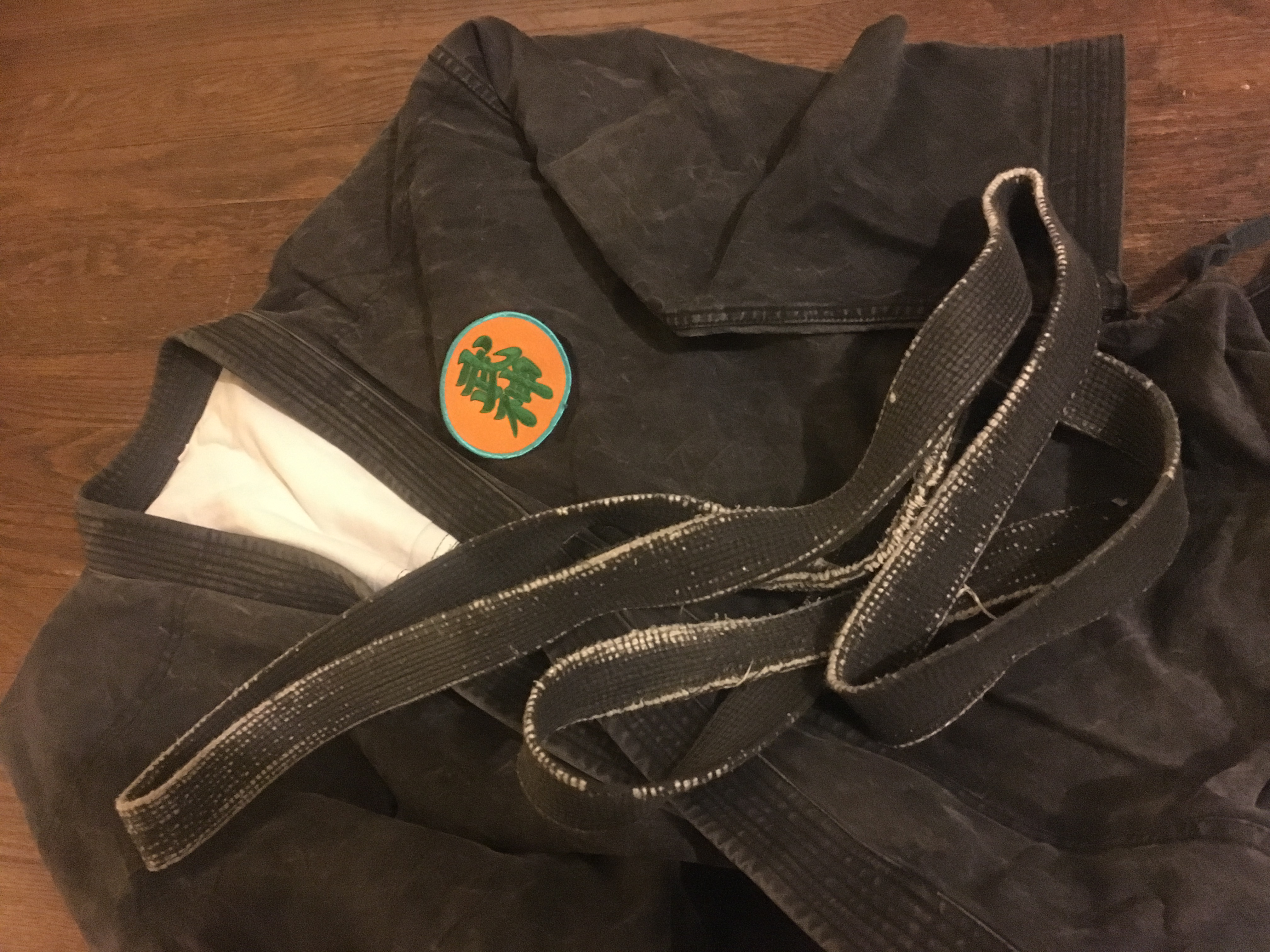 The Myth of Martial Art Instructor Credentials